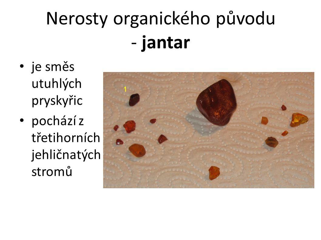 Nerosty organického původu - jantar je směs utuhlých pryskyřic pochází z třetihorních jehličnatých stromů 1