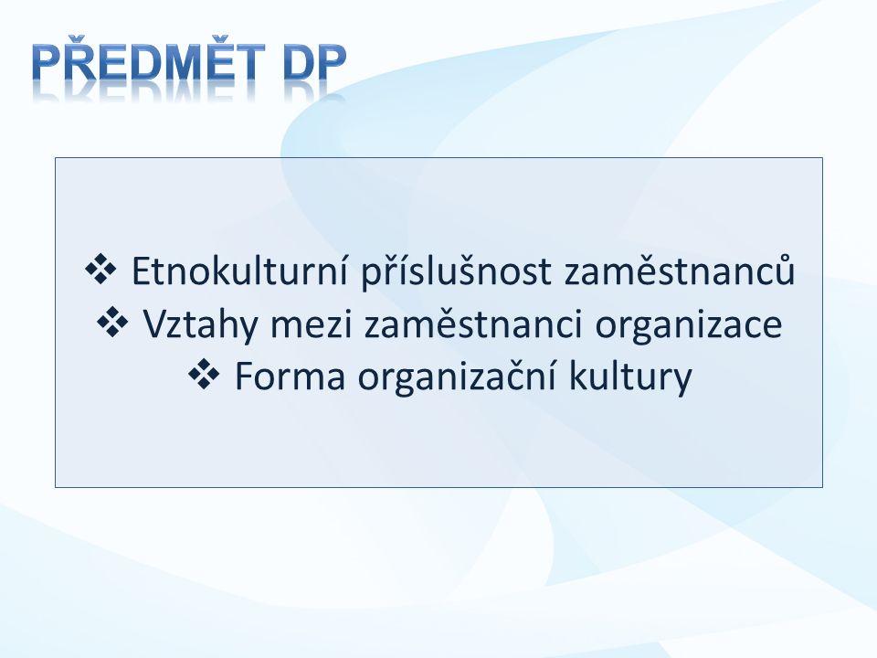  Etnokulturní příslušnost zaměstnanců  Vztahy mezi zaměstnanci organizace  Forma organizační kultury