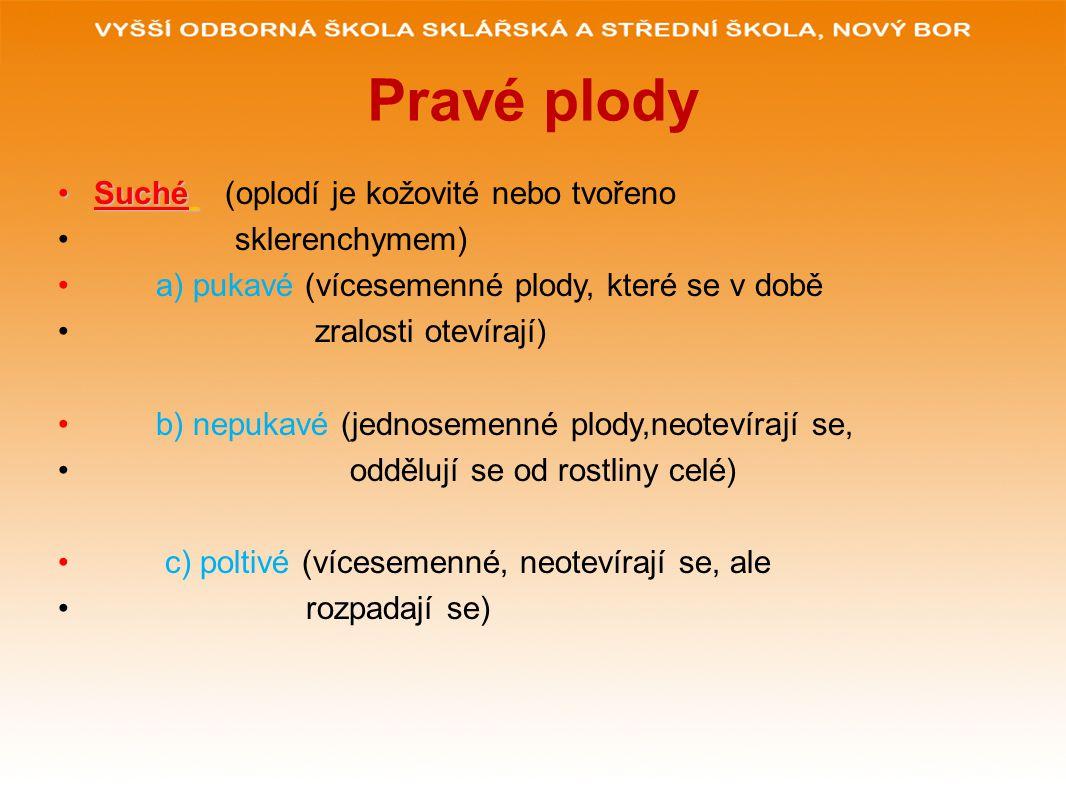 POUŽITÉ ZDROJE:.www.glassschool.cz RNDR. JAN JELÍNEK, RNDr.
