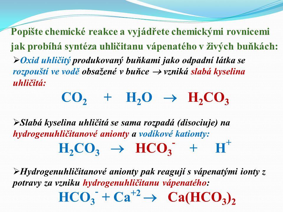 ? Z kterých výchozích látek dokáží živé buňky syntetizovat vápenec ? 1. Z vápenatých iontů (Ca +2 ), které přijímáme v potravě. 2. Z oxidu uhličitého