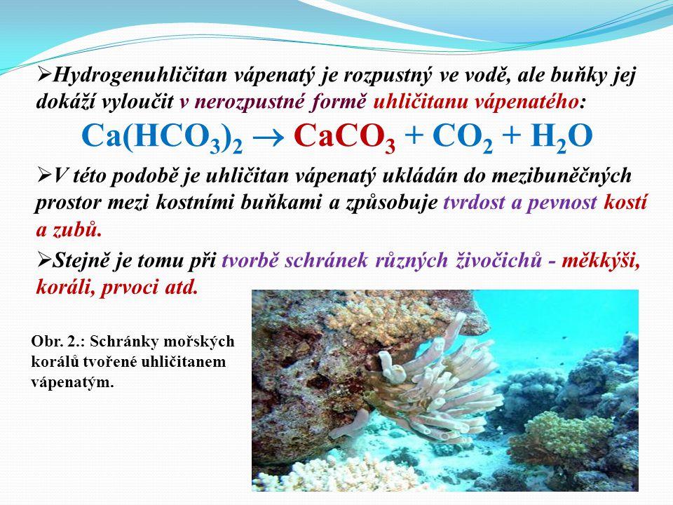  Slabá kyselina uhličitá se sama rozpadá (disociuje) na hydrogenuhličitanové anionty a vodíkové kationty: H 2 CO 3  HCO 3 - + H + Popište chemické r