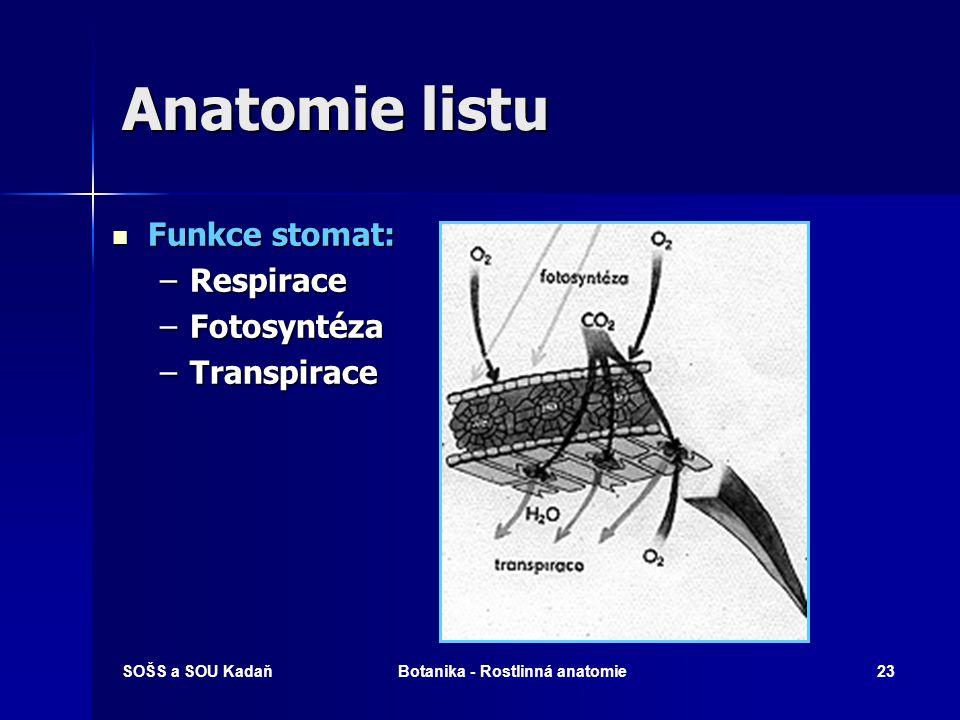 SOŠS a SOU KadaňBotanika - Rostlinná anatomie22 Anatomie listu Stomata – průduchy – buněčná ústa