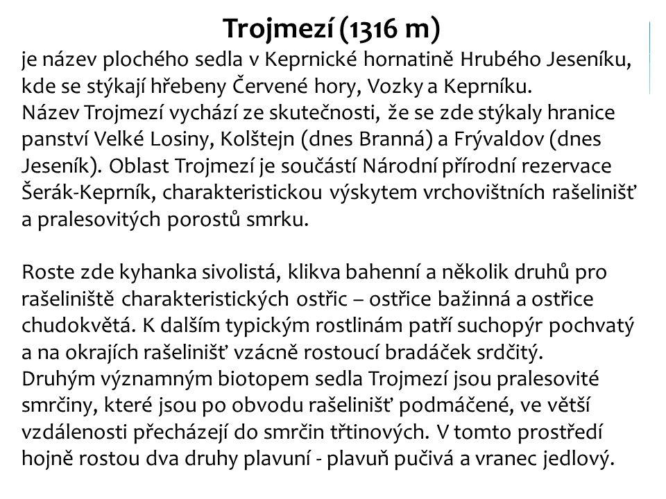 Trojmezí (1316 m) je název plochého sedla v Keprnické hornatině Hrubého Jeseníku, kde se stýkají hřebeny Červené hory, Vozky a Keprníku. Název Trojmez