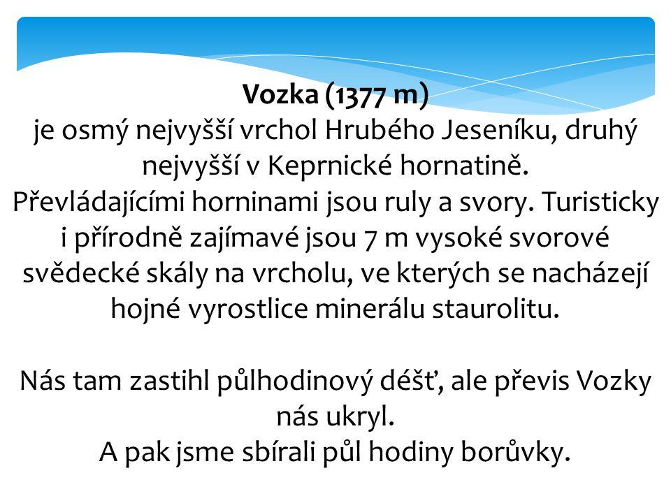 Vozka (1377 m) je osmý nejvyšší vrchol Hrubého Jeseníku, druhý nejvyšší v Keprnické hornatině. Převládajícími horninami jsou ruly a svory. Turisticky