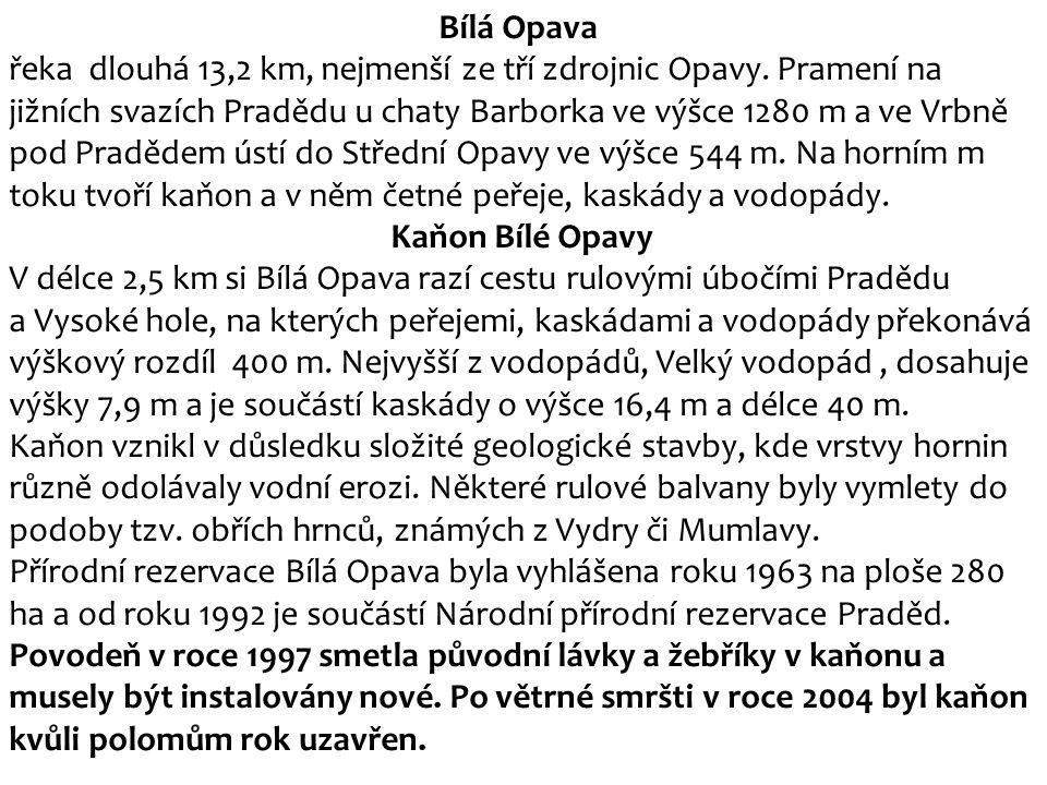 Bílá Opava řeka dlouhá 13,2 km, nejmenší ze tří zdrojnic Opavy. Pramení na jižních svazích Pradědu u chaty Barborka ve výšce 1280 m a ve Vrbně pod Pra