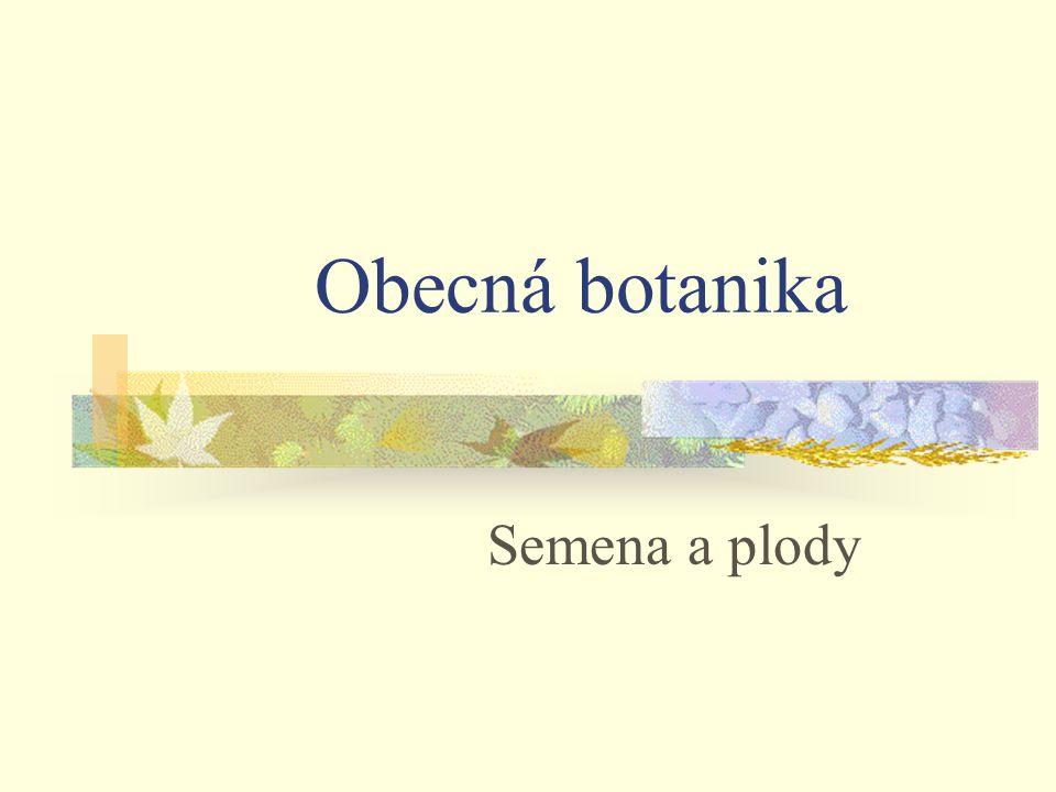 Semena a plody Obecná botanika