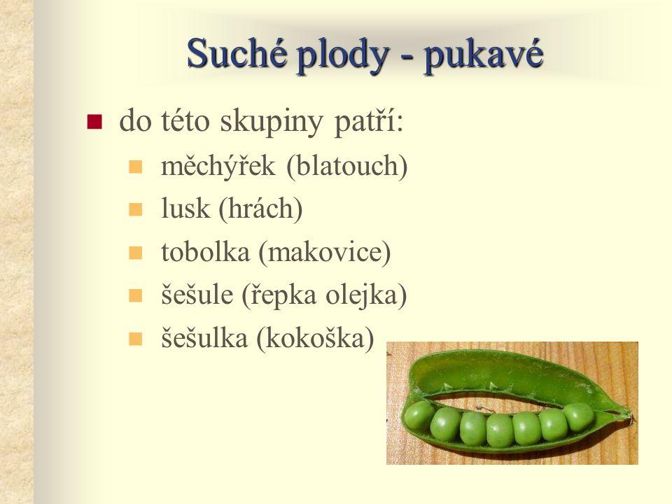 Suché plody - pukavé do této skupiny patří: měchýřek (blatouch) lusk (hrách) tobolka (makovice) šešule (řepka olejka) šešulka (kokoška)