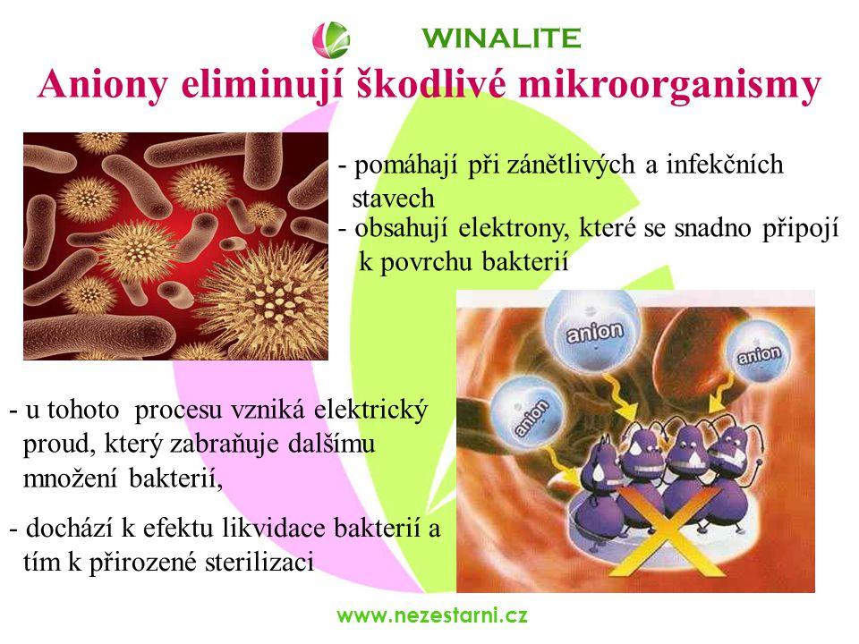 www.nezestarni.cz WINALITE Aniony eliminují škodlivé mikroorganismy - obsahují elektrony, které se snadno připojí k povrchu bakterií - u tohoto procesu vzniká elektrický proud, který zabraňuje dalšímu množení bakterií, - dochází k efektu likvidace bakterií a tím k přirozené sterilizaci - pomáhají při zánětlivých a infekčních stavech