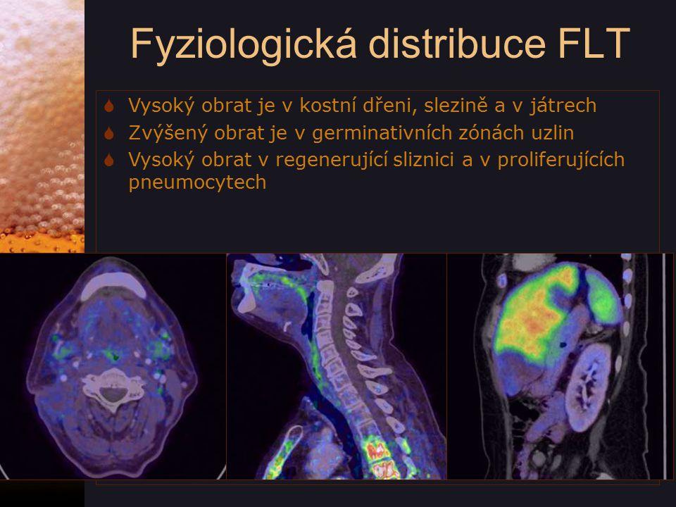 Fyziologická distribuce FLT  Vysoký obrat je v kostní dřeni, slezině a v játrech  Zvýšený obrat je v germinativních zónách uzlin  Vysoký obrat v regenerující sliznici a v proliferujících pneumocytech
