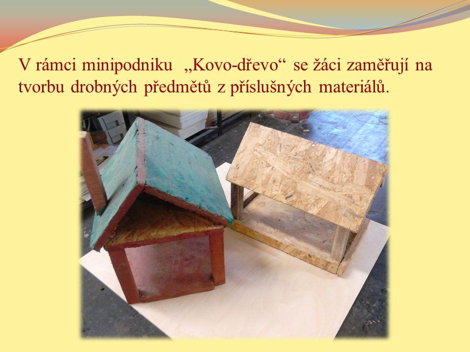 """V rámci minipodniku """"Kovo-dřevo se žáci zaměřují na tvorbu drobných předmětů z příslušných materiálů."""
