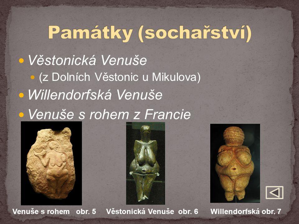 Věstonická Venuše (z Dolních Věstonic u Mikulova) Willendorfská Venuše Venuše s rohem z Francie Venuše s rohem obr. 5 Věstonická Venuše obr. 6 Willend