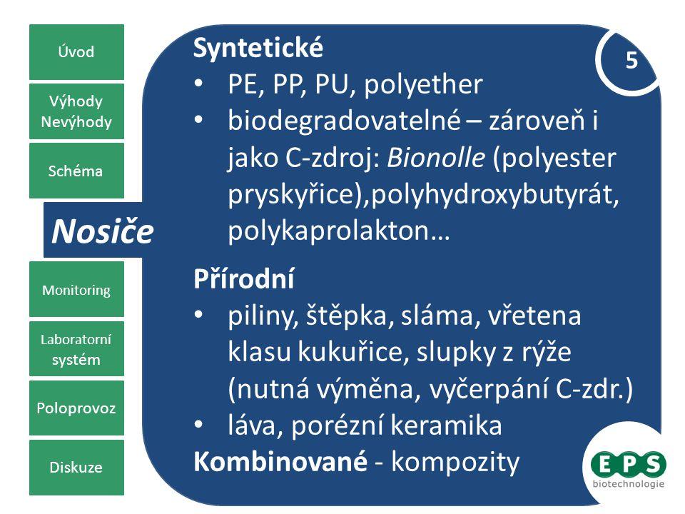 Výhody Nevýhody Chemická klasifikace Monitoring Laboratorní systém Poloprovoz Diskuze Schéma Úvod Nosiče 5 Syntetické PE, PP, PU, polyether biodegrado