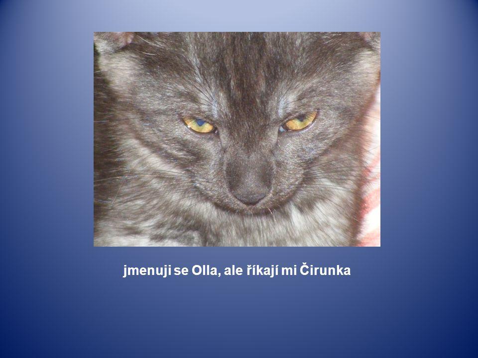 jmenuji se Olla, ale říkají mi Čirunka