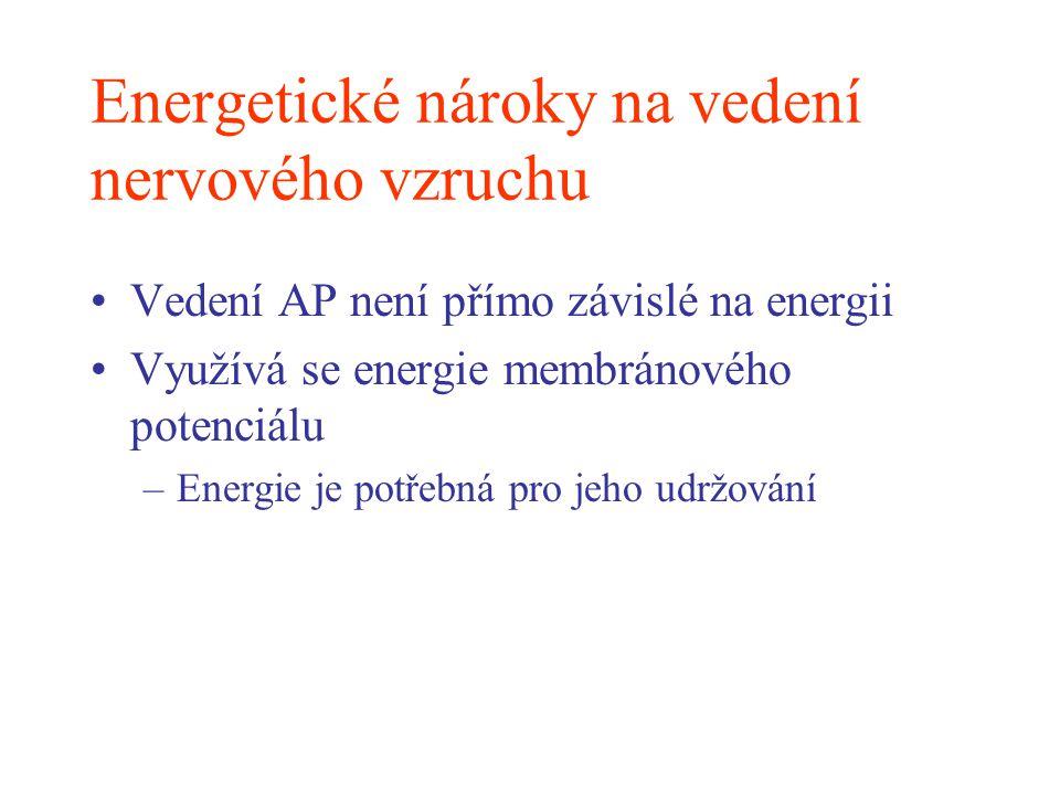 Energetické nároky na vedení nervového vzruchu Vedení AP není přímo závislé na energii Využívá se energie membránového potenciálu –Energie je potřebná