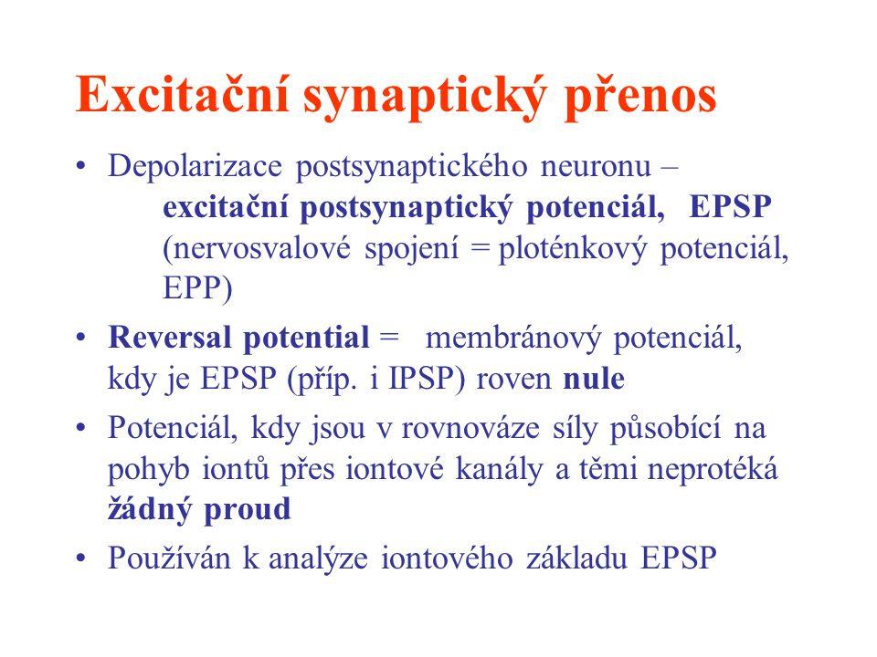 Excitační synaptický přenos Depolarizace postsynaptického neuronu – excitační postsynaptický potenciál, EPSP (nervosvalové spojení = ploténkový potenc