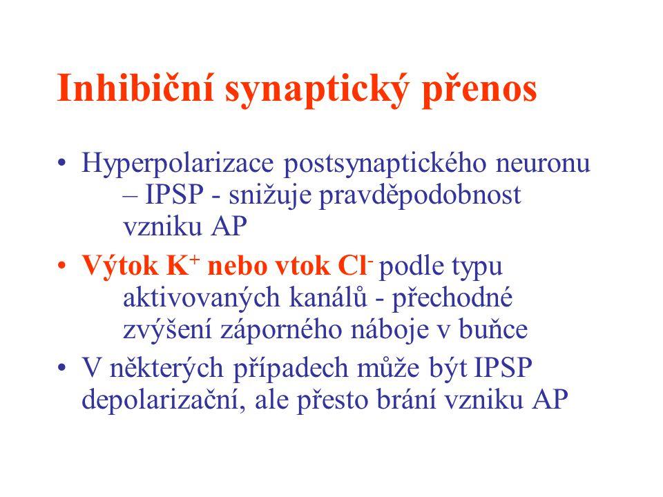 Inhibiční synaptický přenos Hyperpolarizace postsynaptického neuronu – IPSP - snižuje pravděpodobnost vzniku AP Výtok K + nebo vtok Cl - podle typu ak