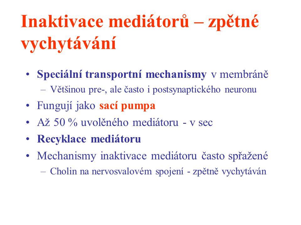 Inaktivace mediátorů – zpětné vychytávání Speciální transportní mechanismy v membráně –Většinou pre-, ale často i postsynaptického neuronu Fungují jak