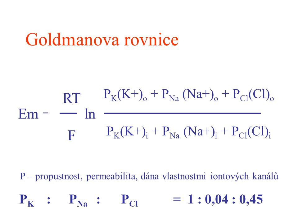 P K (K+) o + P Na (Na+) o + P Cl (Cl) o P K (K+) i + P Na (Na+) i + P Cl (Cl) i Em = RT F ln P – propustnost, permeabilita, dána vlastnostmi iontových
