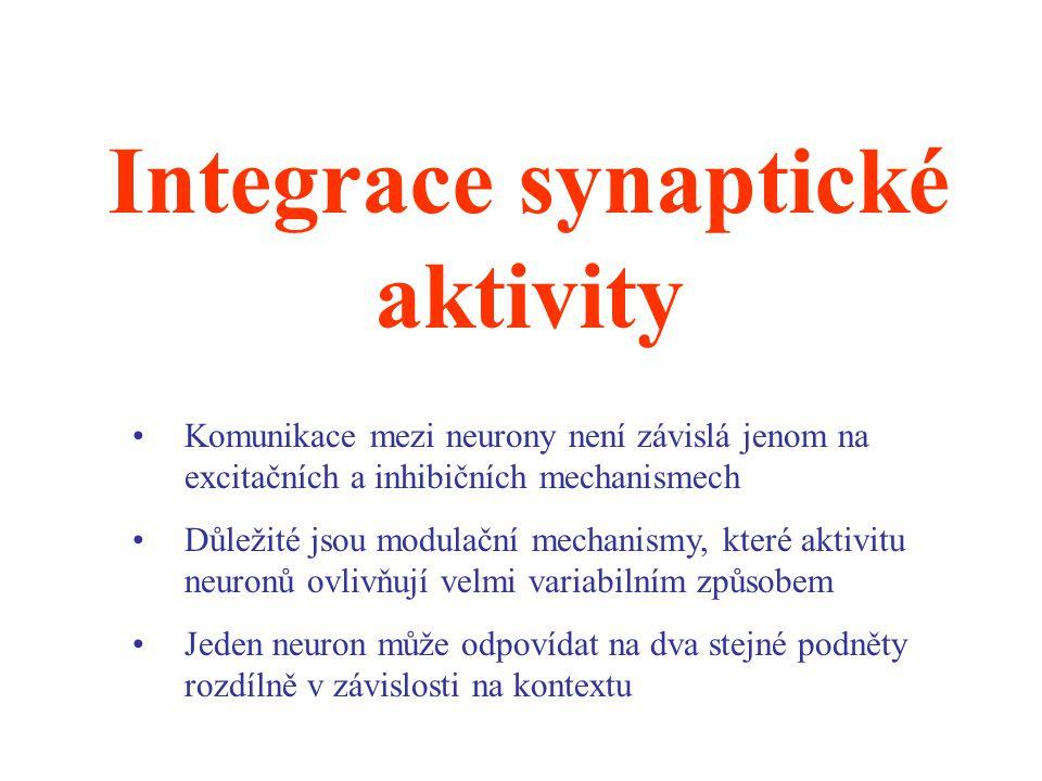 Integrace synaptické aktivity Komunikace mezi neurony není závislá jenom na excitačních a inhibičních mechanismech Důležité jsou modulační mechanismy,