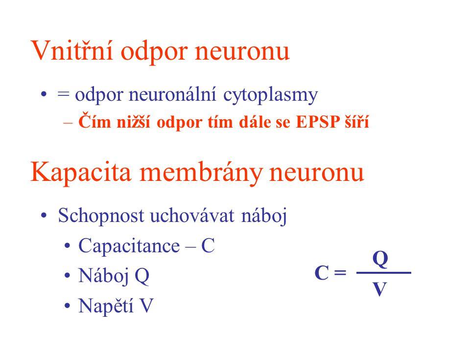 Vnitřní odpor neuronu = odpor neuronální cytoplasmy –Čím nižší odpor tím dále se EPSP šíří Kapacita membrány neuronu Schopnost uchovávat náboj Capacit