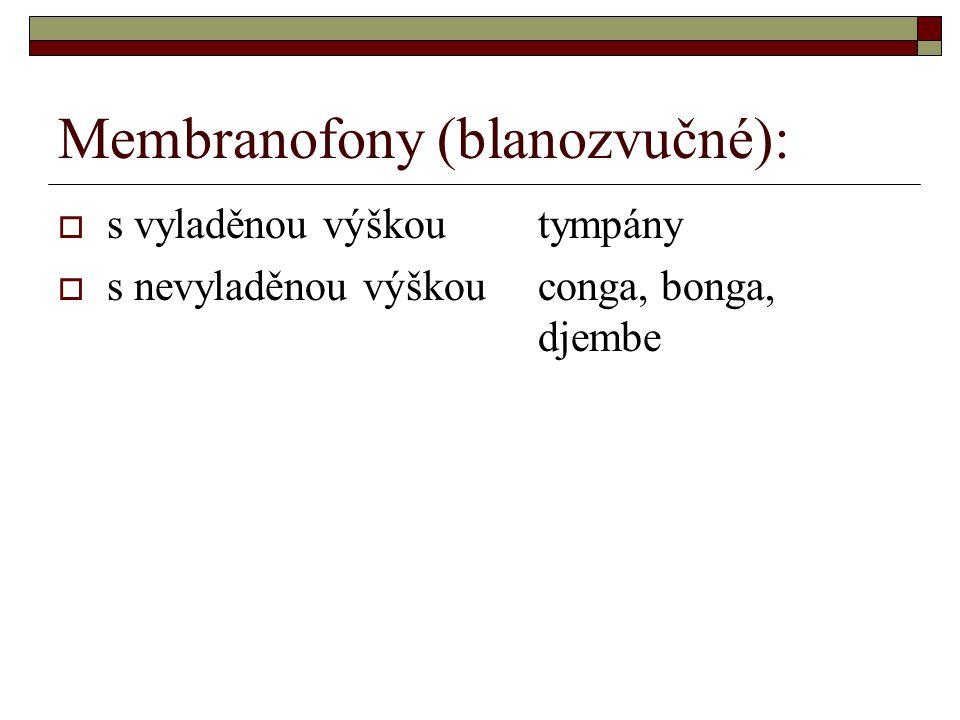 Membranofony (blanozvučné):  s vyladěnou výškoutympány  s nevyladěnou výškouconga, bonga, djembe