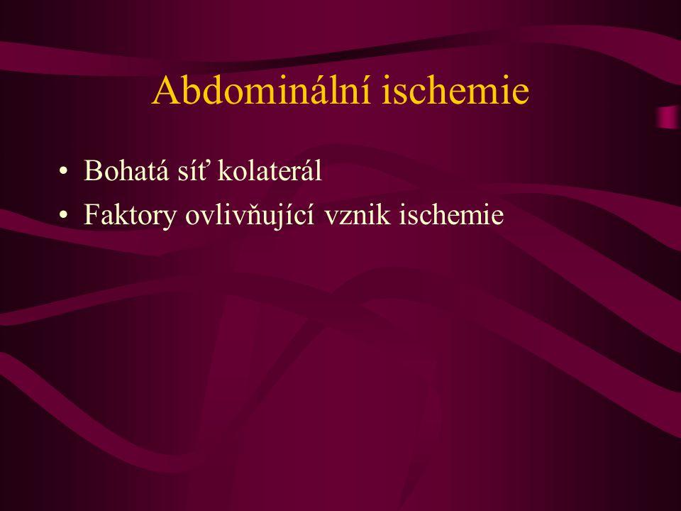 Abdominální ischemie Bohatá síť kolaterál Faktory ovlivňující vznik ischemie