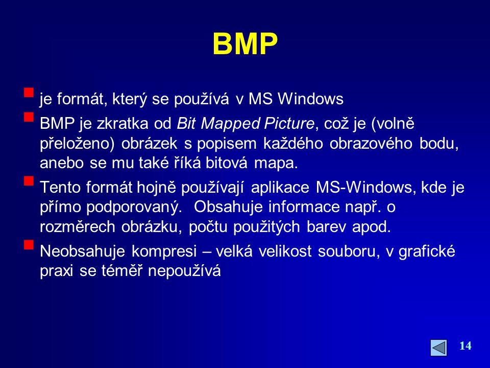 14 BMP  je formát, který se používá v MS Windows  BMP je zkratka od Bit Mapped Picture, což je (volně přeloženo) obrázek s popisem každého obrazovéh
