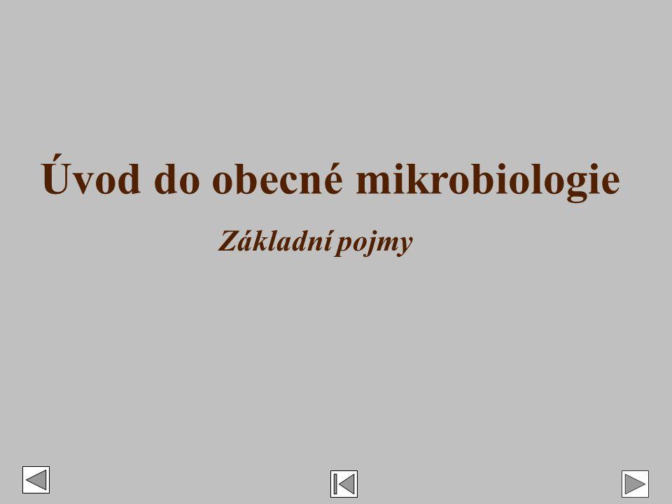 Úvod do obecné mikrobiologie Základní pojmy