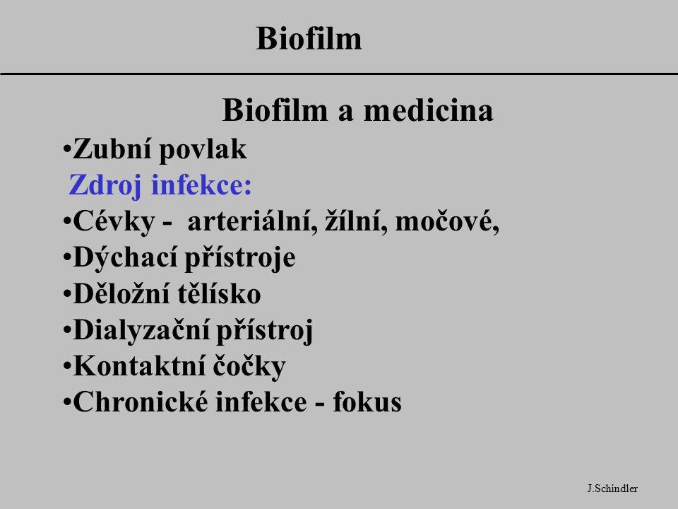 Biofilm J.Schindler Biofilm a medicina Zubní povlak Zdroj infekce: Cévky - arteriální, žílní, močové, Dýchací přístroje Děložní tělísko Dialyzační přístroj Kontaktní čočky Chronické infekce - fokus