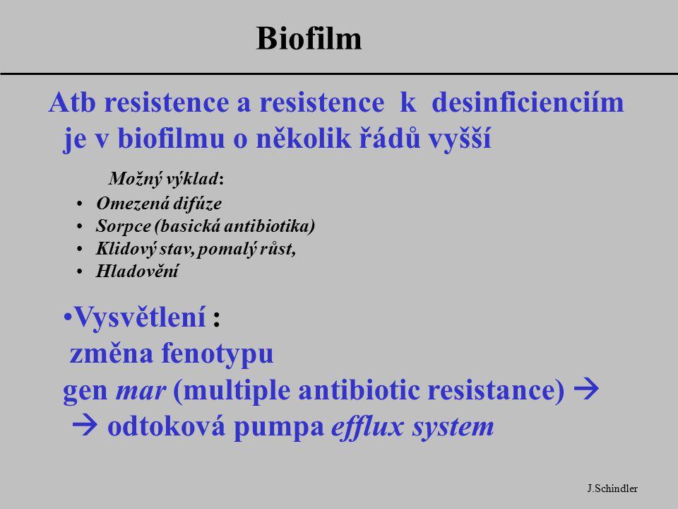 Biofilm J.Schindler Atb resistence a resistence k desinficienciím je v biofilmu o několik řádů vyšší Možný výklad: Omezená difúze Sorpce (basická antibiotika) Klidový stav, pomalý růst, Hladovění Vysvětlení : změna fenotypu gen mar (multiple antibiotic resistance)   odtoková pumpa efflux system