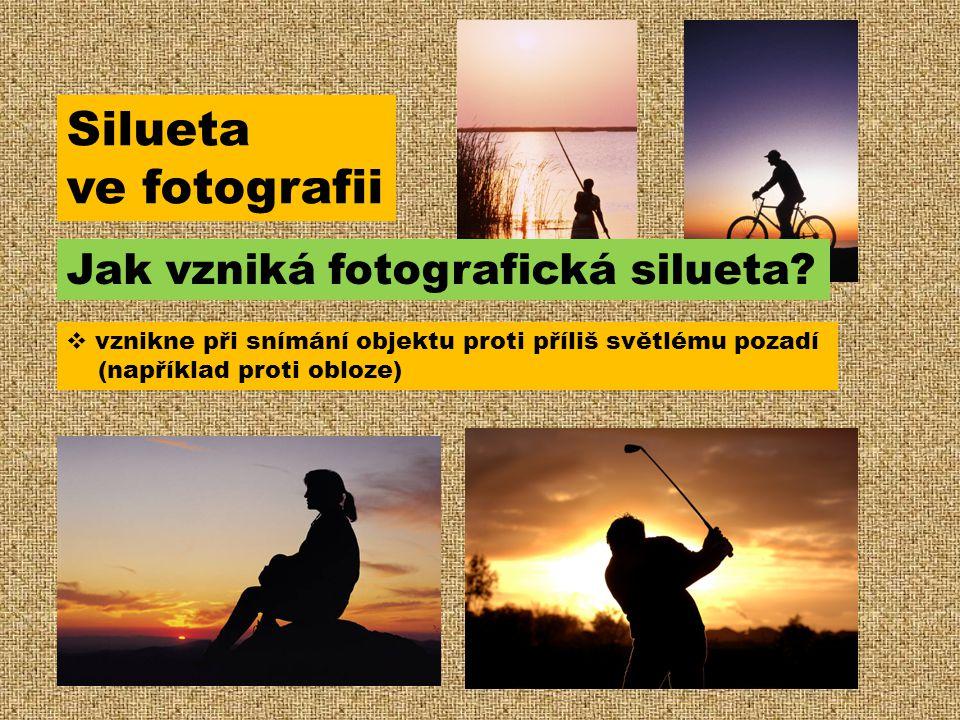  vznikne při snímání objektu proti příliš světlému pozadí (například proti obloze) Silueta ve fotografii Jak vzniká fotografická silueta?
