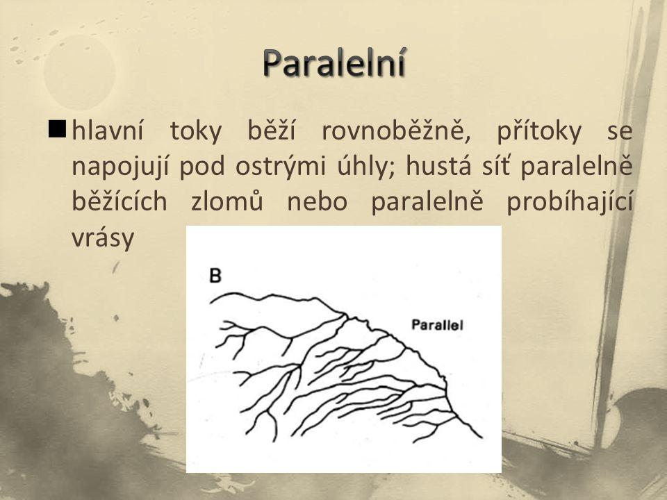hlavní toky běží rovnoběžně, přítoky se napojují pod ostrými úhly; hustá síť paralelně běžících zlomů nebo paralelně probíhající vrásy