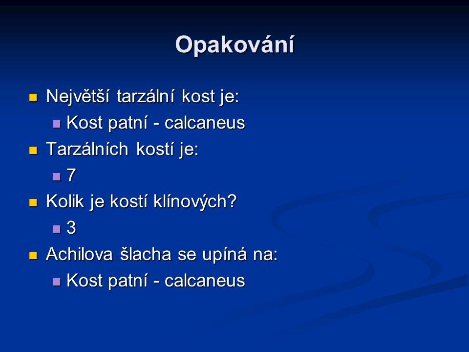 Opakování Největší tarzální kost je: Největší tarzální kost je: Kost patní - calcaneus Kost patní - calcaneus Tarzálních kostí je: Tarzálních kostí je