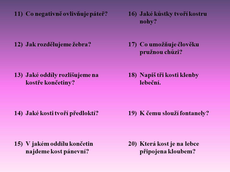 Otázky a odpovědi 1)Jak rozdělujeme kosti podle tvaru.