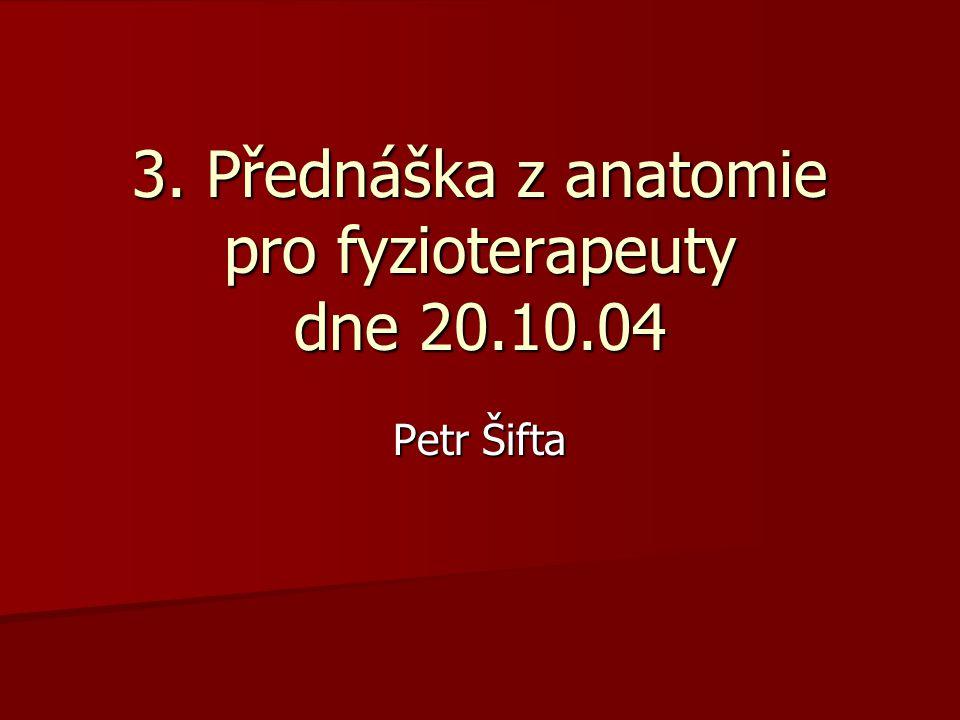 3. Přednáška z anatomie pro fyzioterapeuty dne 20.10.04 Petr Šifta