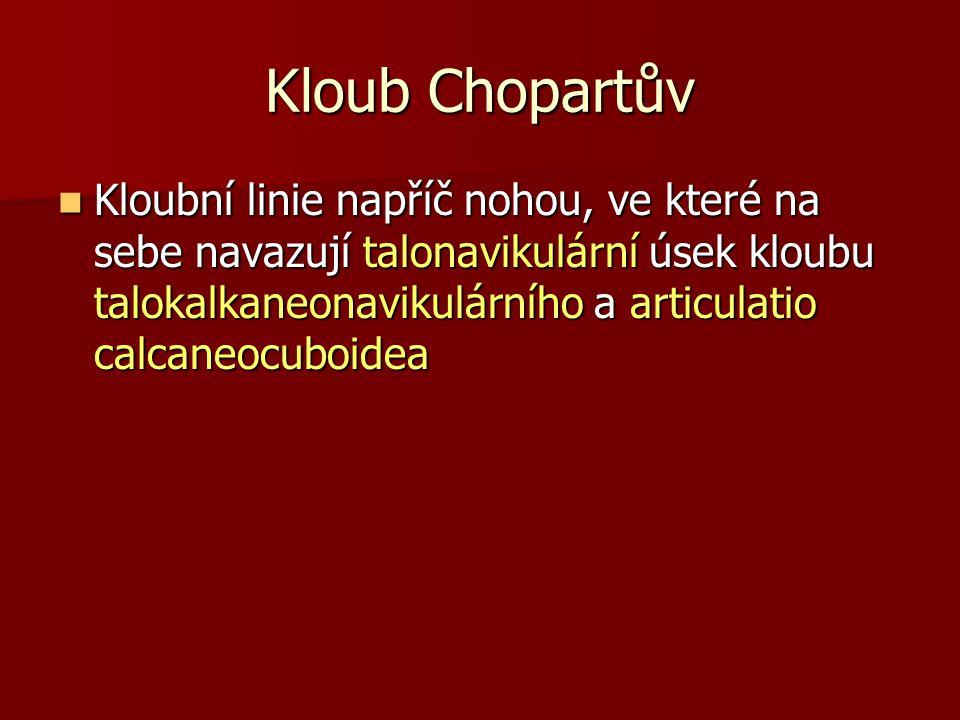 Kloub Chopartův Kloubní linie napříč nohou, ve které na sebe navazují talonavikulární úsek kloubu talokalkaneonavikulárního a articulatio calcaneocubo