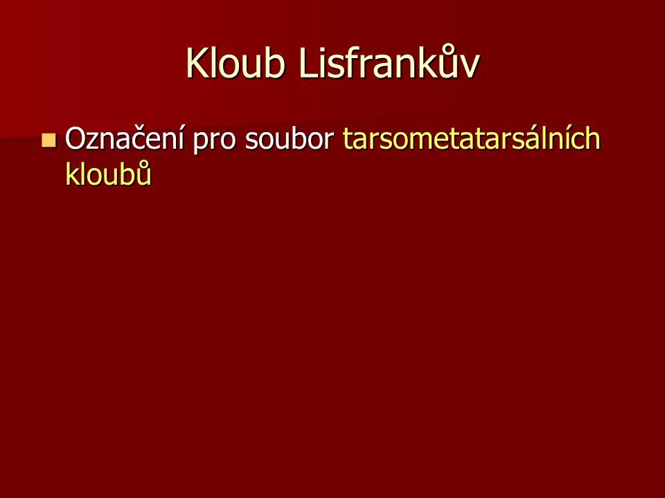 Kloub Lisfrankův Označení pro soubor tarsometatarsálních kloubů Označení pro soubor tarsometatarsálních kloubů