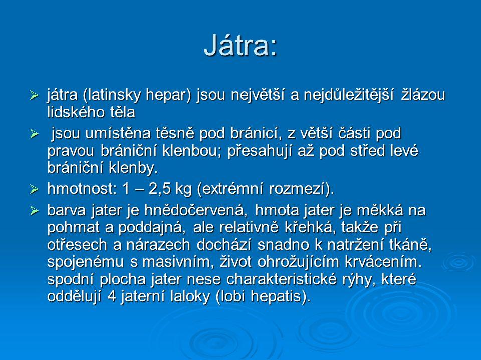 Játra:  játra (latinsky hepar) jsou největší a nejdůležitější žlázou lidského těla  jsou umístěna těsně pod bránicí, z větší části pod pravou bránič