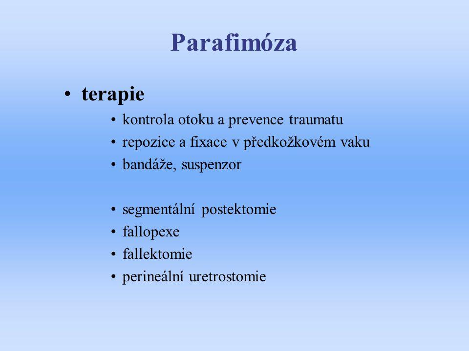 Parafimóza terapie kontrola otoku a prevence traumatu repozice a fixace v předkožkovém vaku bandáže, suspenzor segmentální postektomie fallopexe falle