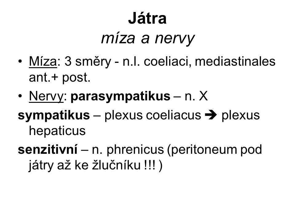 Játra míza a nervy Míza: 3 směry - n.l. coeliaci, mediastinales ant.+ post. Nervy: parasympatikus – n. X sympatikus – plexus coeliacus  plexus hepati