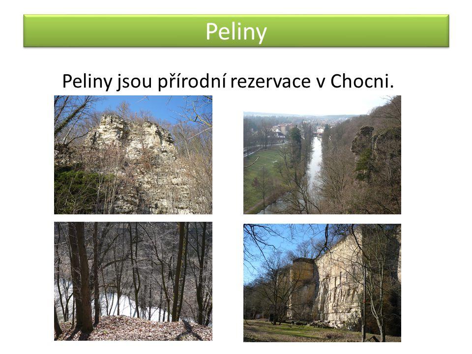 Peliny Peliny jsou přírodní rezervace v Chocni.