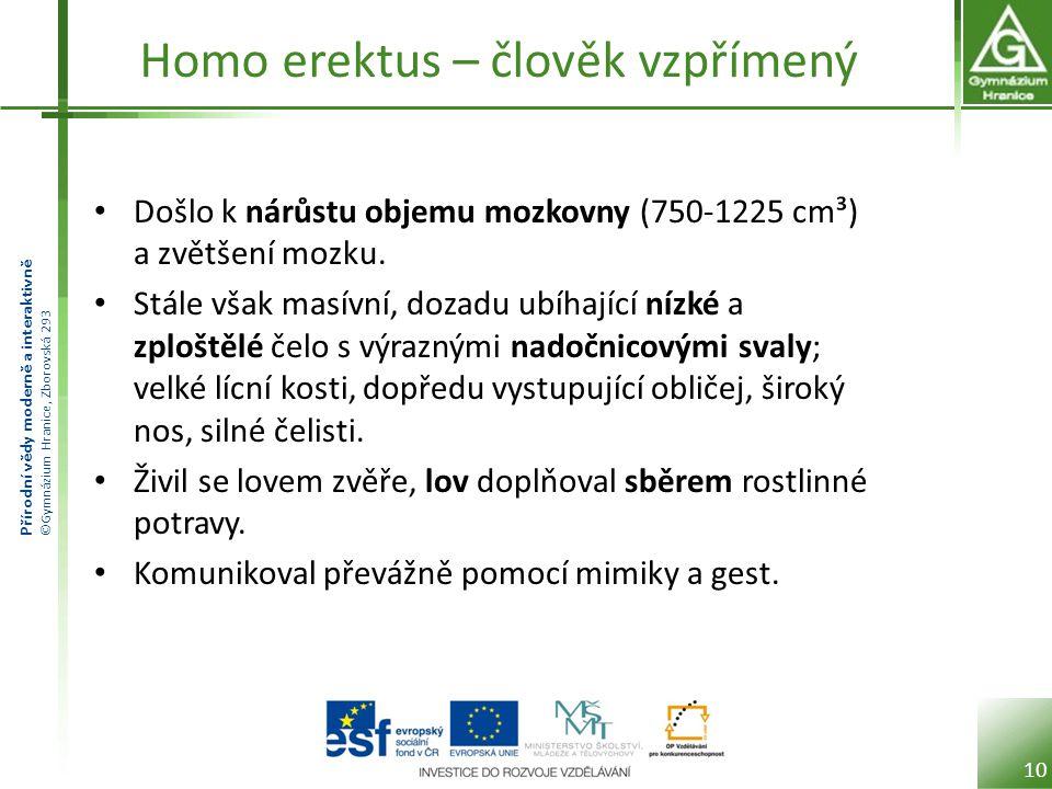 Přírodní vědy moderně a interaktivně ©Gymnázium Hranice, Zborovská 293 Homo erektus – člověk vzpřímený Došlo k nárůstu objemu mozkovny (750-1225 cm³)