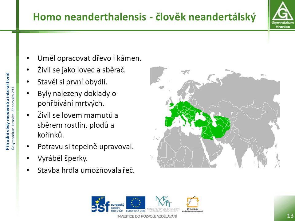 Přírodní vědy moderně a interaktivně ©Gymnázium Hranice, Zborovská 293 Homo neanderthalensis - člověk neandertálský Uměl opracovat dřevo i kámen. Živi