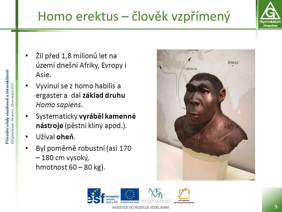 Přírodní vědy moderně a interaktivně ©Gymnázium Hranice, Zborovská 293 Homo erektus – člověk vzpřímený Žil před 1,8 milionů let na území dnešní Afriky