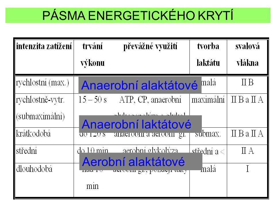 Anaerobní alaktátové Anaerobní laktátové Aerobní alaktátové PÁSMA ENERGETICKÉHO KRYTÍ