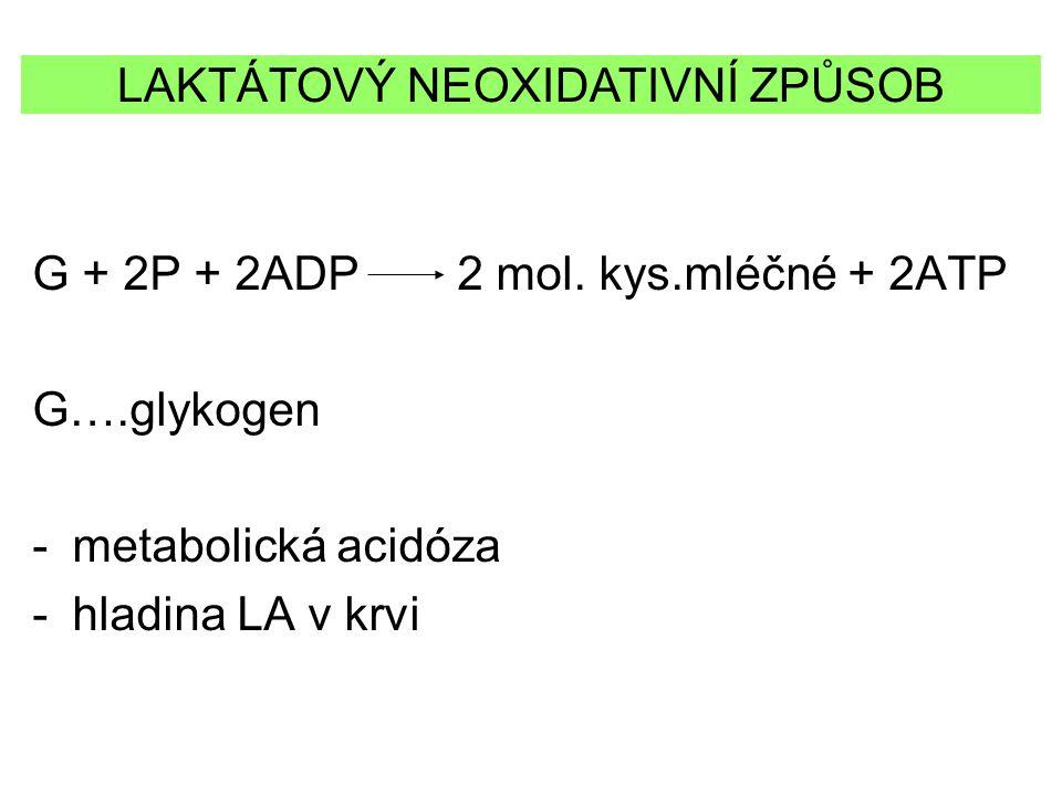 G + 2P + 2ADP 2 mol. kys.mléčné + 2ATP G….glykogen -metabolická acidóza -hladina LA v krvi LAKTÁTOVÝ NEOXIDATIVNÍ ZPŮSOB