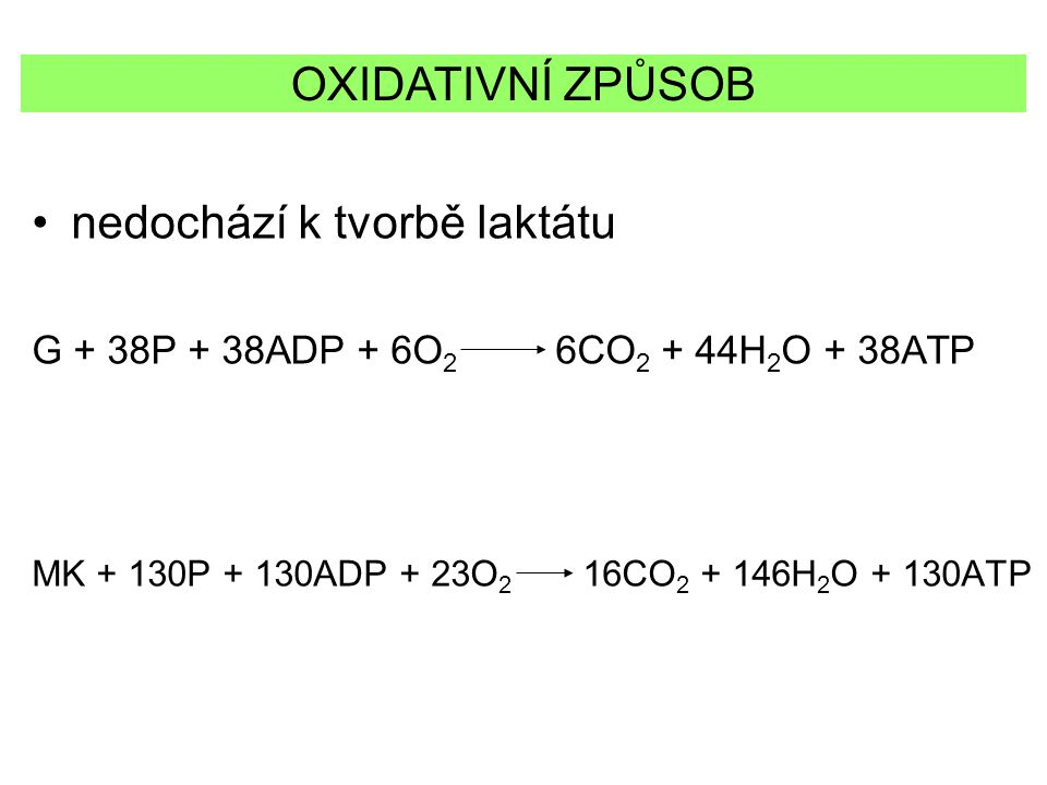 nedochází k tvorbě laktátu G + 38P + 38ADP + 6O 2 6CO 2 + 44H 2 O + 38ATP MK + 130P + 130ADP + 23O 2 16CO 2 + 146H 2 O + 130ATP OXIDATIVNÍ ZPŮSOB