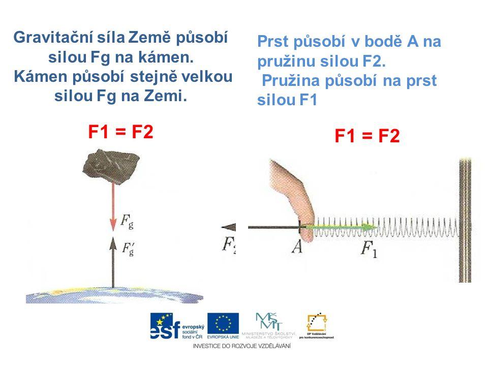 Gravitační síla Země působí silou Fg na kámen. Kámen působí stejně velkou silou Fg na Zemi. F1 = F2 Prst působí v bodě A na pružinu silou F2. Pružina