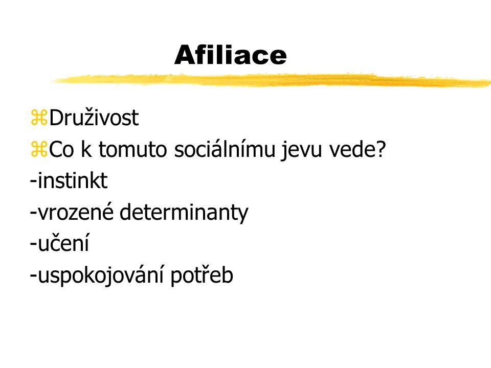 Afiliace zDruživost zCo k tomuto sociálnímu jevu vede.