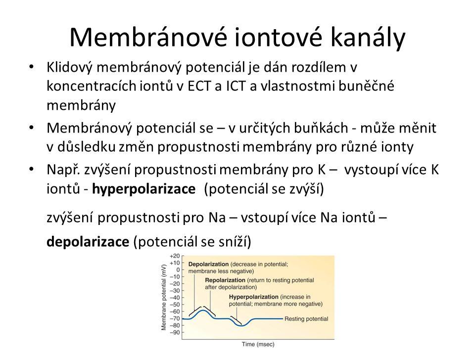 Membránové iontové kanály Klidový membránový potenciál je dán rozdílem v koncentracích iontů v ECT a ICT a vlastnostmi buněčné membrány Membránový pot